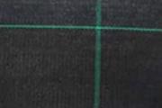 solar sera sere solarii transilvania folie sticla multiart multimed tunel vertical easyart nordiart simplu glassart hobby botanic garden cercetare storeart farmart ciupercarie ciupercarii activitati recreative fotovoltaic venlosun multisun umbrire lalele capsuni generator generatoare floricultura pepiniera policarbonat gradina botanica gradini botanice flori finantare fonduri europene ghivece arce culme hidroponic struguri professional tanar fermier cultivare legume gaz metan livezi rosii fertirigare ecran umbrire castraveti rasaduri familie pereti verticali submasura 4.1 cresterea animalelor depozitare stocare Italian calla rosa magnolia mughetto girasole sere transilvania sere moldova sere dobrogea sere muntenia sere oltenia sere banat sere crisana sere bucovina sere maramures solarii transilvania solarii moldova solarii dobrogea solarii muntenia solarii oltenia solarii banat solarii crisana solarii bucovina solarii maramures sere solarii satu mare sere solarii baia mare maramures sere solarii suceava sere solarii botosani sere solarii bihor oradea sere solarii salaj zalau sere solarii bistrita sere solarii piatra neamt sere solarii iasi sere solarii cluj napoca sere solarii tirgu mures sere solarii miercurea ciuc harghita sere solarii bacau sere solarii vaslui sere solarii arad sere solarii alba iulia sere solarii timis timisoara sere solarii deva hunedoara sere solarii sibiu sere solarii brasov sere solarii sfantu gheorghe covasna sere solarii focsani sere solarii galati sere solarii timisoara sere solarii caras severin sere solarii resita sere solarii vrancea sere solarii gorj sere solarii tirgu jiu sere solarii ramnicu valcea sere solarii arges sere solarii pitesti sere solarii targoviste sere solarii dambovita sere solarii prahova ploiesti sere solarii pitesti sere solarii buzau sere solarii braila sere solarii tulcea sere solarii mehedinti sere solarii drobeta turnu severin sere solarii dolj sere solarii craiova sere solarii slatina sere solarii olt sere sol